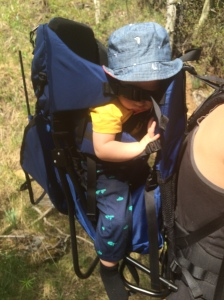 At least we know its a comfy ride, Elbow Falls 2015
